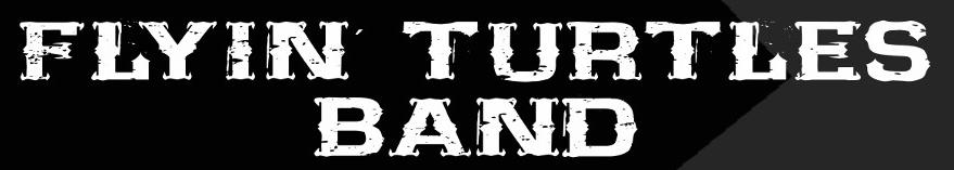 Dieses Bild hat ein leeres Alt-Attribut. Der Dateiname ist Flyin-Turtles-Logo.jpg
